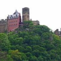 Lanius-Knab wine estate #wine #rhine #germany