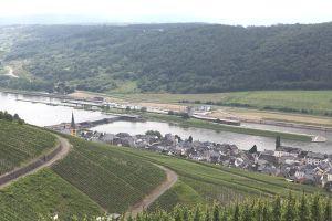 Weingut Herbert Pazen wine estate #germany #moselleriver#wine