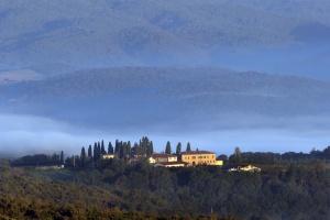 Brunello di Montalcino 2011, Tenute SilvioNardi