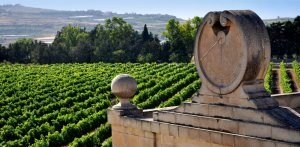THE CULTURE OF WINE IN MALTA