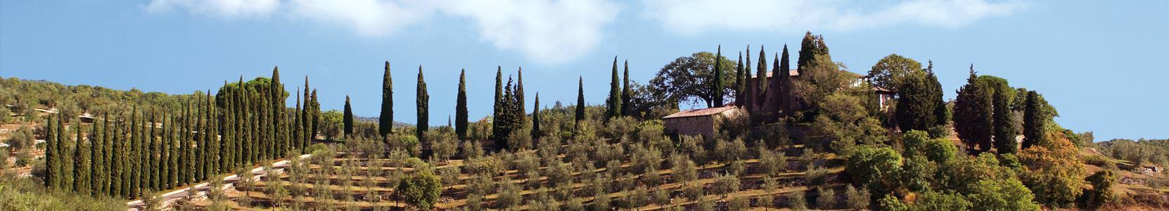 Colli della Toscana Centrale Gagliole