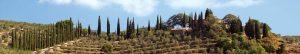 Colli della Toscana CentraleGagliole