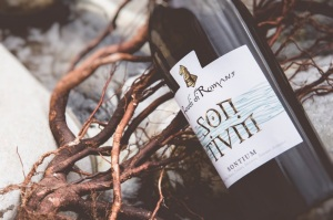 Sontium new cuvée by I Feudi di Romans pay tribute to river Isonzo