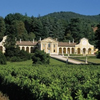Asolo Prosecco Superiore DOCG: so much to discover in a single glass